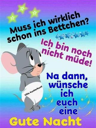 Gute Nacht Spruch Witzig Gutenachtbilder Gutenachtspruchwitzig