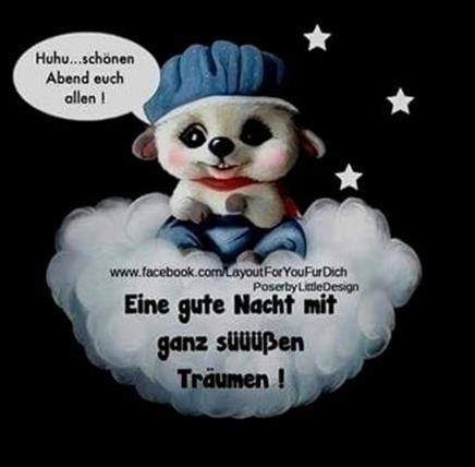gute-nacht-bilder-lustig_13