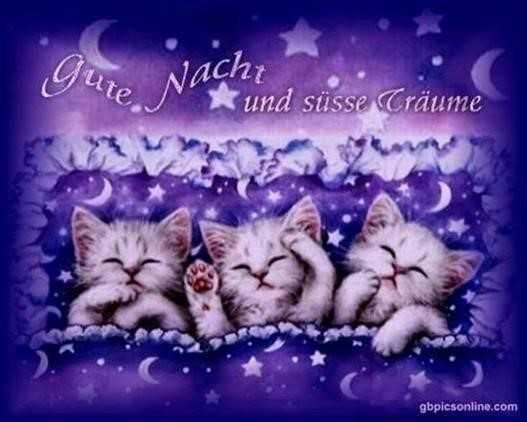 gute-nacht-bilder-süß_9