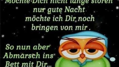 Photo of gute nacht bilder witzig