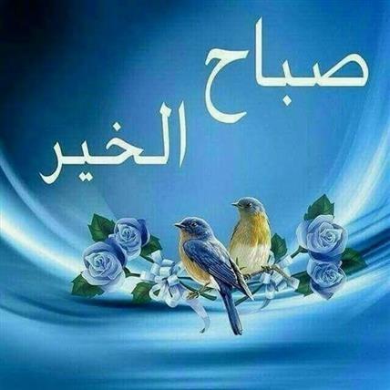 Guten Morgen Bilder Arabisch Gb Bilder Gb Pics