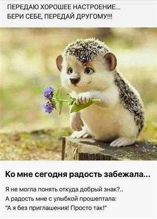 Guten Morgen Bilder Auf Russisch Gb Bilder Gb Pics