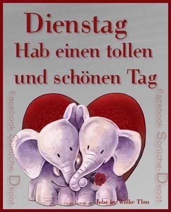 Guten Morgen Bilder Elefant Gb Bilder Gb Pics