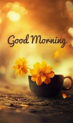Guten Morgen Bilder Englisch Kostenlos Gb Bilder Gb Pics
