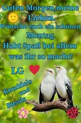 Guten Morgen Bilder Für Whatsapp Montag Gb Bilder Gb