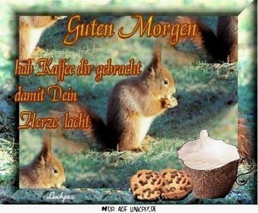 Guten Morgen Bilder Herbstlich Gb Bilder Gb Pics