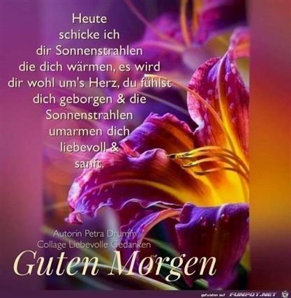 Guten Morgen Bilder Herz Gb Bilder Gb Pics Gästebuchbilder