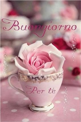 Guten Morgen Bilder Italienisch Gb Bilder Gb Pics