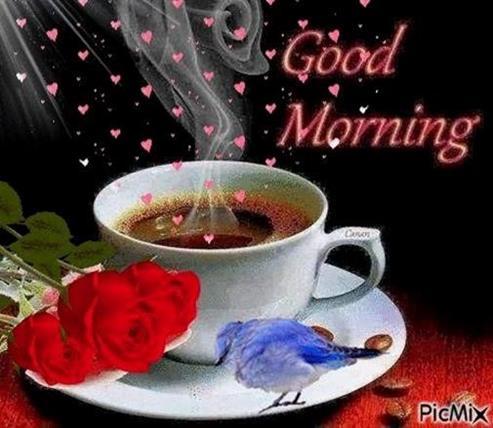 Guten Morgen Bilder Kostenlos Gb Bilder Gb Pics