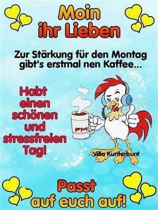 Guten Morgen Bilder Lustig Montag Gb Bilder Gb Pics