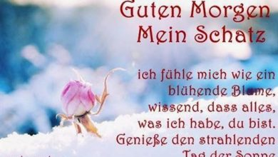 Photo of guten morgen bilder mit text
