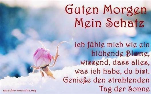 Guten Morgen Bilder Ohne Text Gb Bilder Gb Pics