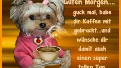 Photo of guten morgen bilder