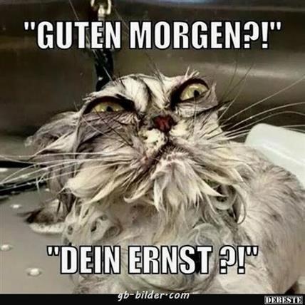 guten-morgen-lustige-bilder-und-sprüche_18