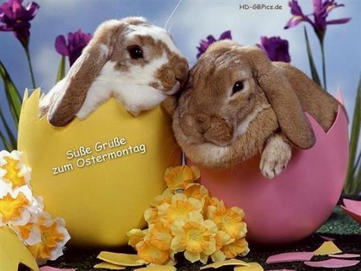 Ostermontag grüße zum Schöne Ostergrüße