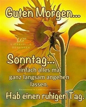 guten-morgen-sonntag-bilder_7