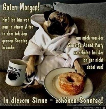 Guten Morgen Sonntag Lustig
