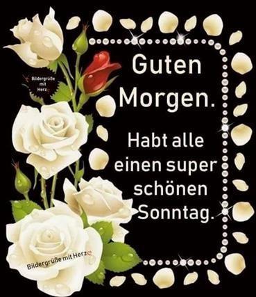 guten-morgen-und-schönen-sonntag-bilder_29