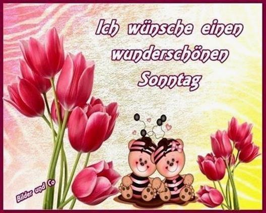 guten-morgen-und-schönen-sonntag-bilder_31