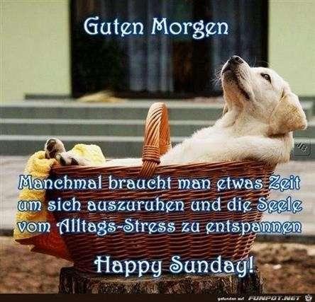 Lustiges Zum Sonntag