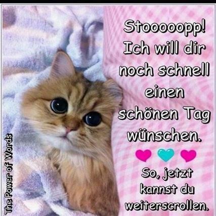 schönen-sonntag-bilder-für-whatsapp_10
