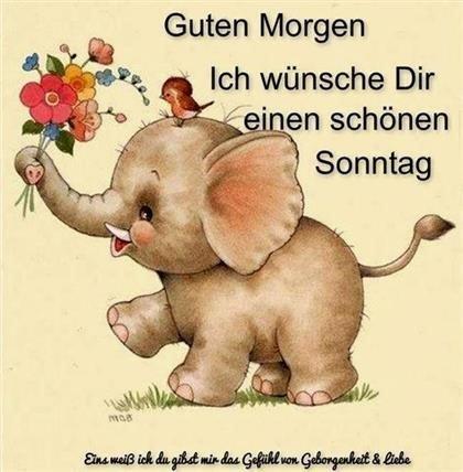 schönen-sonntag-bilder-für-whatsapp_12