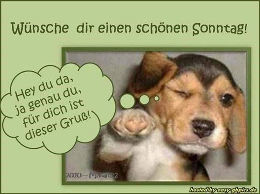 schönen-sonntag-bilder-für-whatsapp_14