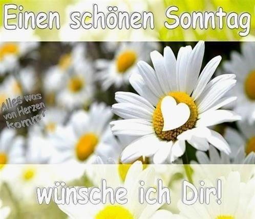 schönen-sonntag-bilder-für-whatsapp_21