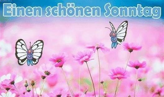 schönen-sonntag-bilder-für-whatsapp_25