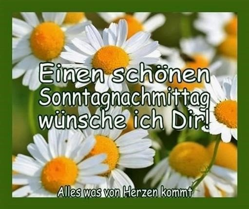schönen-sonntag-bilder-für-whatsapp_37