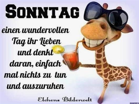 schönen-sonntag-bilder-für-whatsapp_7