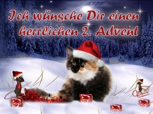 bilder-sprüche-2-advent_16