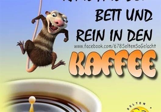 guten-morgen-lustige-bilder-freitag_17