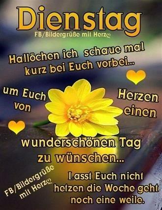 Schönen-Dienstag-Bilder_17_43a57