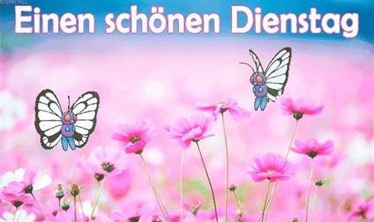 Schönen-Dienstag-Bilder_5_96a07