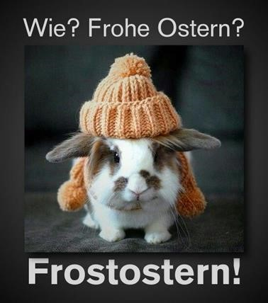 frohe-ostern-lustig_15