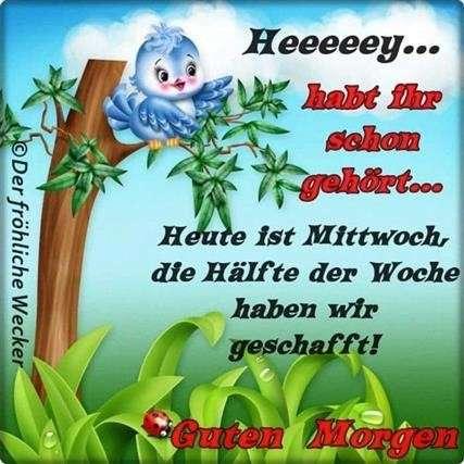 guten-morgen-am-mittwoch_7