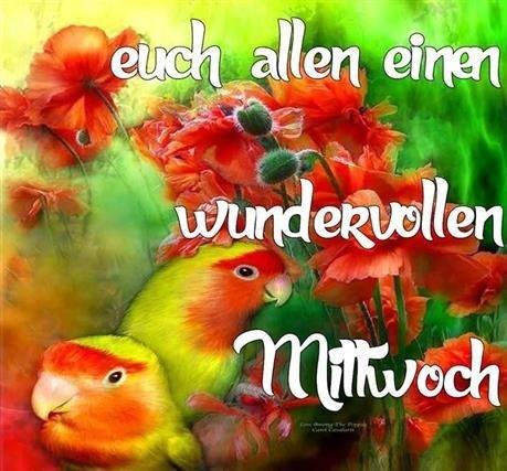 hallo-am-mittwoch_16