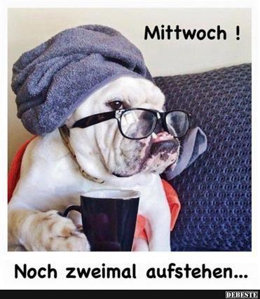 mittwoch-lustige-sprüche_19