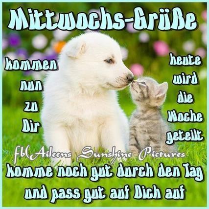 mittwoch-lustige-sprüche_22