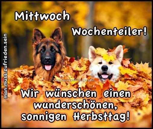 mittwoch-wochenteiler_7