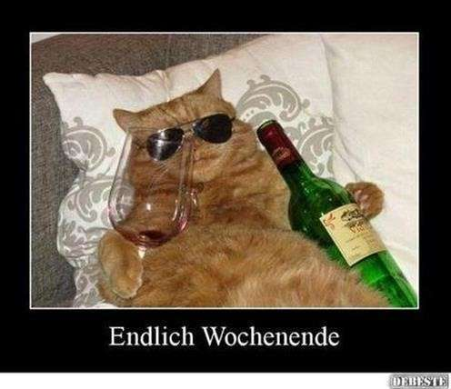 wochenendgrüße-lustig_15