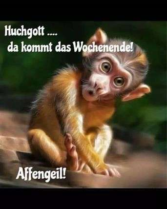 wochenendgrüße-lustig_4
