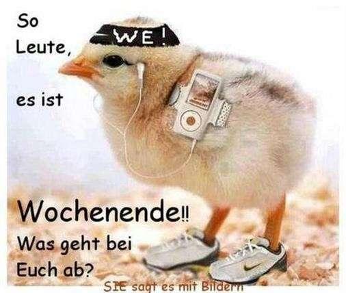wochenendgrüße-lustig_8